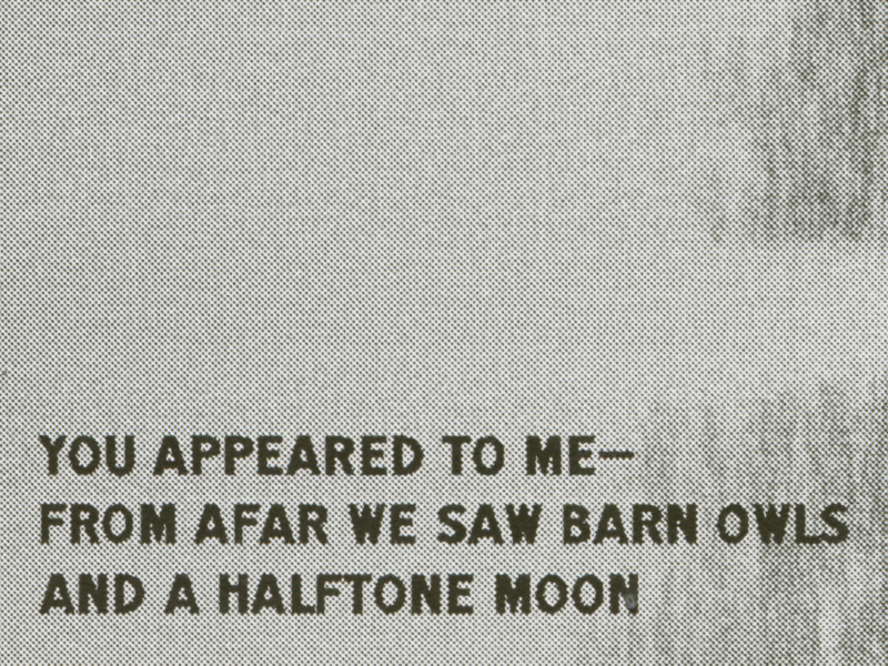 Set Syllables No  47—Barn Owls, Moon by Ryan Arruda