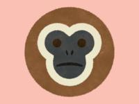 Gibbon!