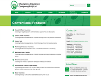 Champions Insurance - Secondary page