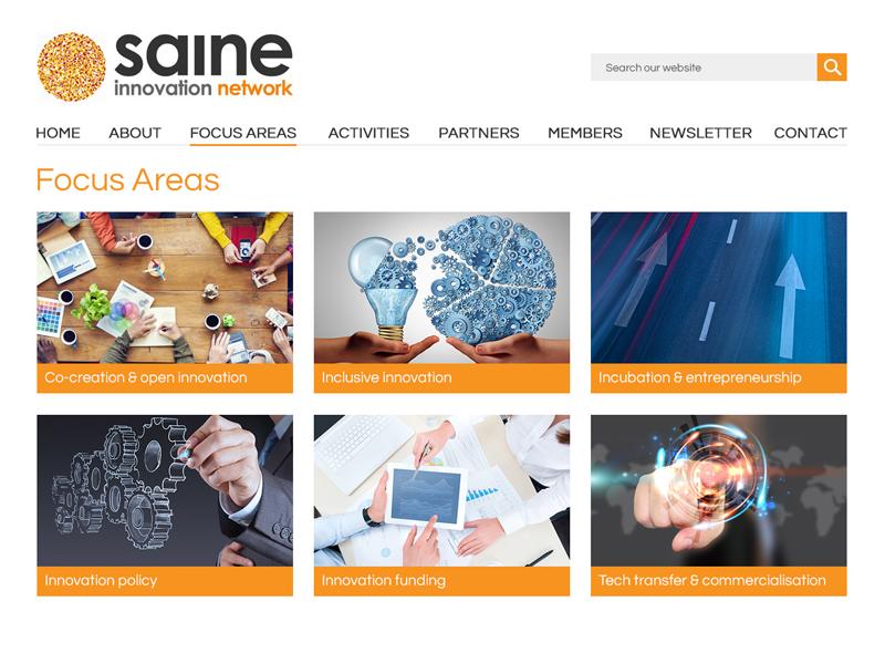 Saine focus areas page