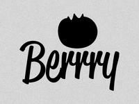Berrry Logo Concept 07