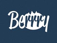 Berrry Logo - White