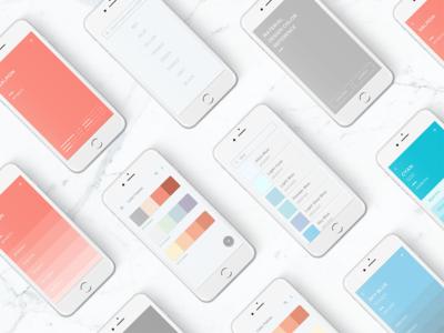 Color Reference Concept App app mobile ui color