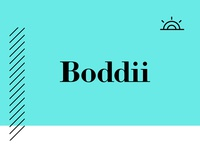 Boddii Branding
