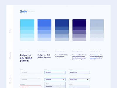Budgee UI Style Guide