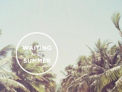 Dribbble summer