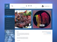 Pandora Concept