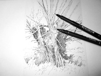 tree - work in progress