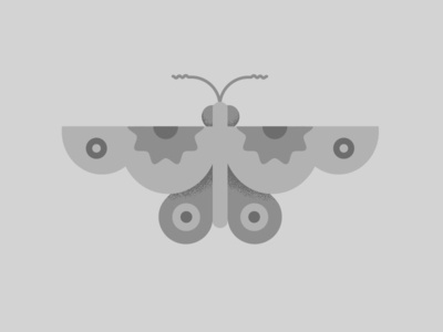 Night Butterfly doodle night butterfly insect bug illustration grey butterfly