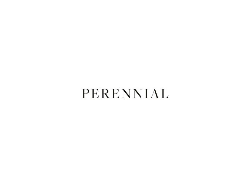 Perennial Logo Design wedding photographer serif icon watermark typography design portrait photographer photographer logo branding