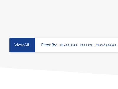 Mockup of Blog Post Filter System minimal search bar search blog filter blog ux ui simple modern