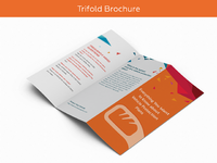 03 trifold brochure
