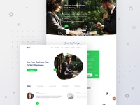 Bizz - Landing page design for business solution