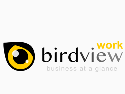 birdview.work time tracking software idenity branding sign design illustration company logotype logo