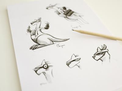 Kangaroo Sketches