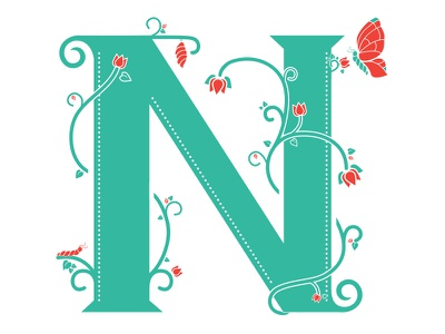 N n illustration narrative butterfly cycle lettering creative market