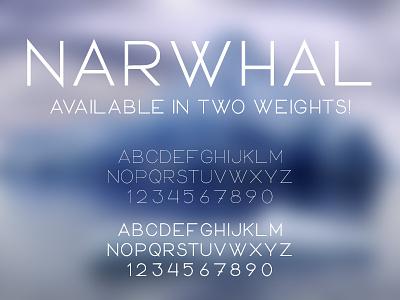 Narwhal Typeface san-serif display-face narwhal bold regular