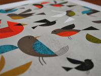 Birds 11 22x14 22 Print