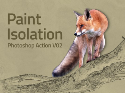 Paint Isolation Action digital images photo photoshop painting paint