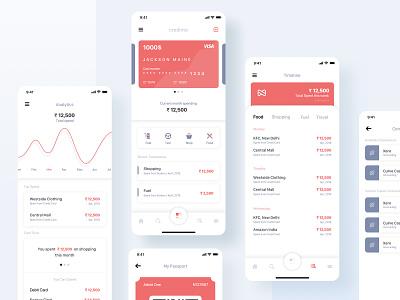 Expense Tracker App Exploration expense management expense tracker credit card payment finance app dribbble ios app ux ui finances finance