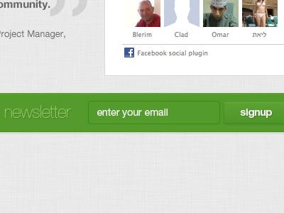 Newsletter Signup email newsletter web design website