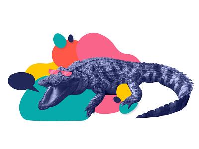 Cool Orlando Gater sunglasses photo illustrator vector orlando florida aligator color