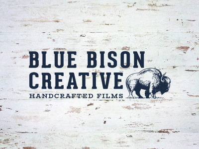 Blue Bison Handcrafted Films
