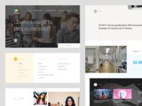 IQS — University Website