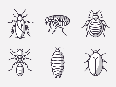 Icons Of Insects Part 1