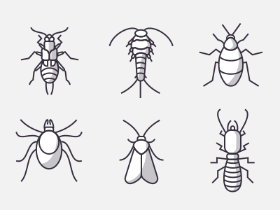 Icons Of Insects Part 2