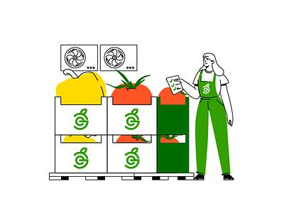 Grocery warehouse. woman human vegetable grocery warehouse web illustration food illustration character illustration vector illustrations character design illustration