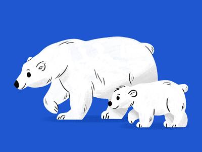 polarbears character illustration skwirrol