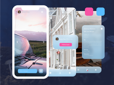 Outline Day frosted glass brand gallery photography user profile media social vector design color branding blue ux sketch iphone x ios ui app ui kit