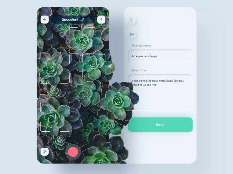 Nursery App preview vector nursery camera detection nature succulent neuomorphic skeuomorph ux sketch ai plant ui app ui kit