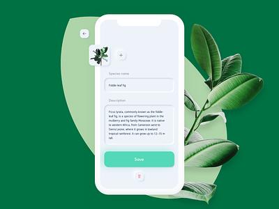 Nursery App ficus item text input minimal white greenery plant green sketch ux ios app ui