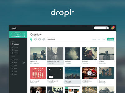 Droplr Dashboard cloud upload dashboard app web desktop website icons icon application simple flat