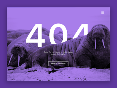 Daily UI #008 404 Page not found daily ui 008 008 error design page 404 ui web dailyui daily