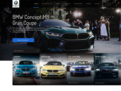 BMW Redesign