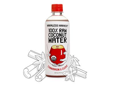 Cinnamon & Clove Illustration marketing illo drawing drink bottle line illustration
