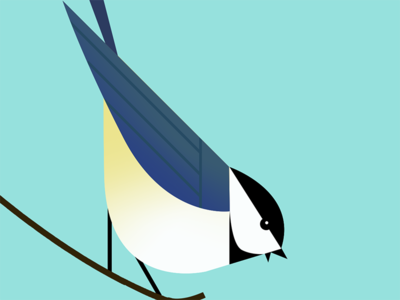 Blue Tit Bird ed tech minimal character modernist app icon flat minimalist