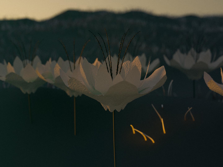Flowers renders render flowers design colors noise visual c4d