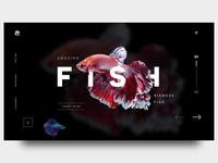Strange Sea Creature website UI design
