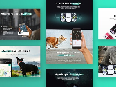 Paby - GPS tracker - Webdesign - WIP gps dog one page design microsite landing page ux ui webdesign web pet pets
