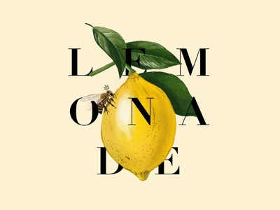 Lemonade lemon procreate queen bee bee beyonce lemonade