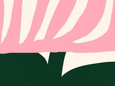 🌷 design bold color shapes white pink green illustration shape texture