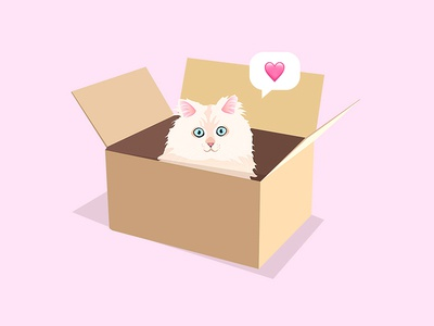 Cats And Boxes illustration love icon vector boxe cat