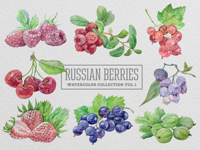 Russian berries. Watercolor collection. strawberry raspberry cherry sale berries watercolor illustration