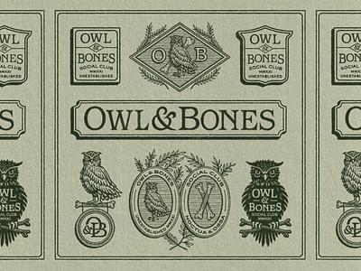 Owl Bones Branding logo design bones owl branding retro logo badge texture graphic design vintage woodcut travis pietsch illustration design
