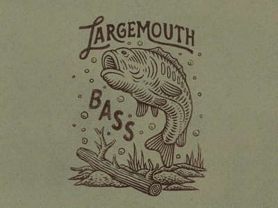 Largemouth Bass lettering handlettering fish bass drawing badge graphic design texture stamp vintage woodcut travis pietsch design illustration