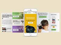 VivaPets portal - Home page (Mobile)